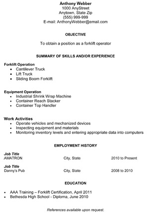 combination resume - Combination Resume Template