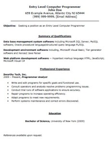 Entry Level Computer Programmer Resume The Resume Template Site