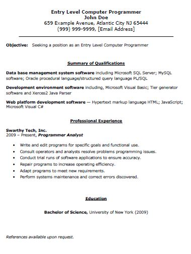 Entry Level Computer Programmer Resume - The Resume Template Site